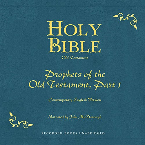 Holy Bible, Volume 14 audiobook cover art