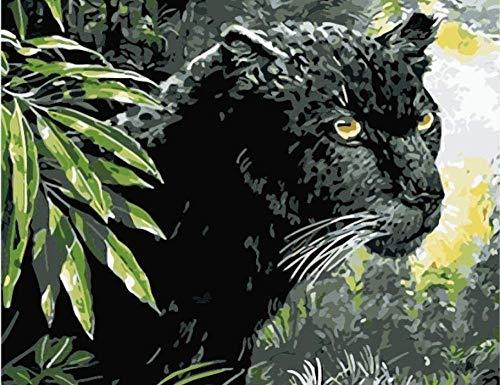 HAON DIY nummer schilderij dier zwarte panter olieverf kit acrylverf tekening op canvas voor kinderen volwassenen frameloze huis huisdecoratie 16x20 inch