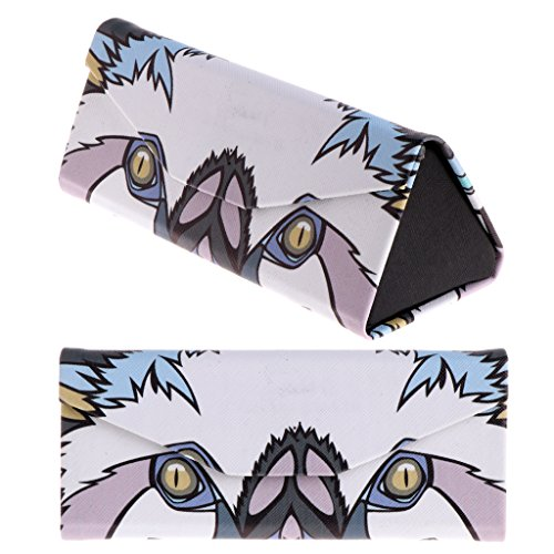 VVXXMO Caja de almacenamiento triangular para gafas de sol, diseño de dibujos animados, caja de almacenamiento para gafas de lectura