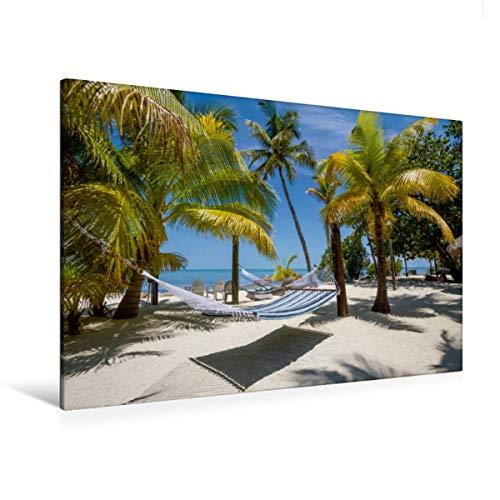 Premium - Lienzo de lienzo (120 x 80 cm, horizontal, con imagen sobre bastidor, imagen sobre lienzo auténtico, diseño de Idylle Calvendo Orte), diseño de CALVENDO
