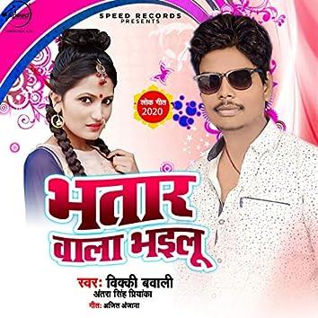 Bhatar Wala Bhailu - Single