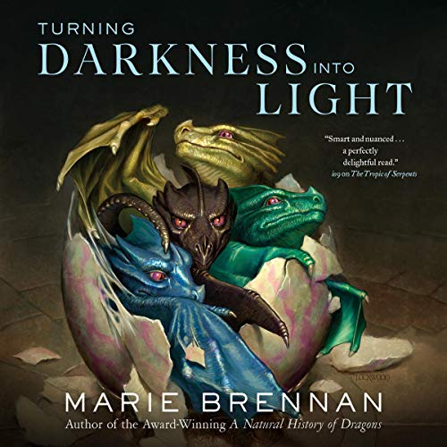 Turning Darkness into Light  By  cover art