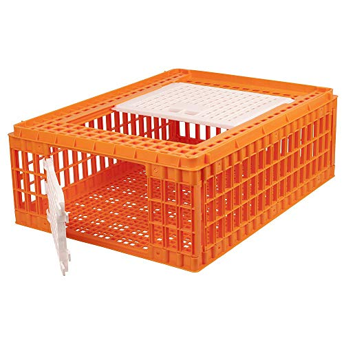 My Favorite Chicken Transport Crate Carrier Cage for Poultry, Chickens, 2 Doors, Orange