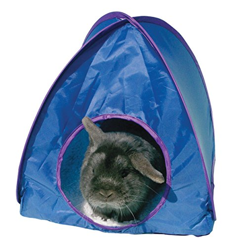Rosewood Small Animal Activity Toy Pop-Up Tent Boredom Breaker, Assorted colors / Large