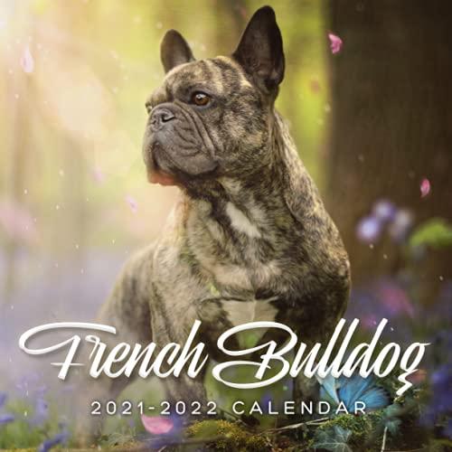 French Bulldog 2021-2022 Calendar: 18 Months July 2021 - dec 2022 calendar with French Bulldog