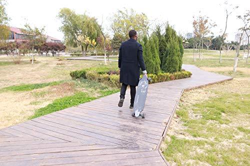 E-Skateboard RCB Longboard mit Elektromotor Bild 5*