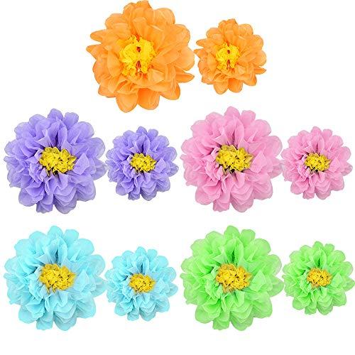 SNAGAROG 10 piezas de papel de seda Pompones Bola de flores de papel 2 tamaños Pom Pom Decoraciones colgantes para la decoración de la fiesta de cumpleaños de la boda (5 colores, 8, 12 pulgadas)