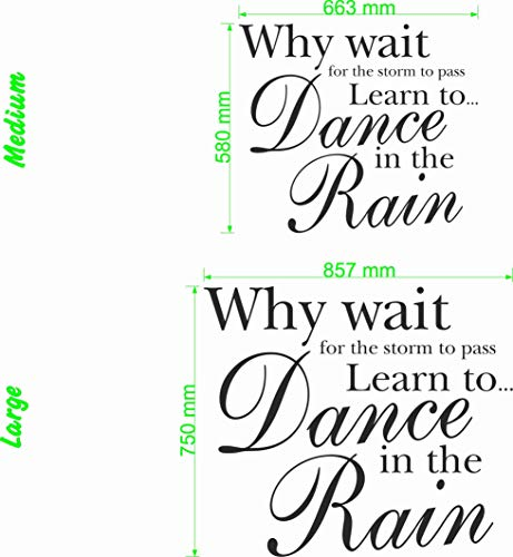 Wonderous Wall Art Why Wait for The Storm to Pass, Learn to Dance in The Rain. – Citation Murale (Grande), Noir