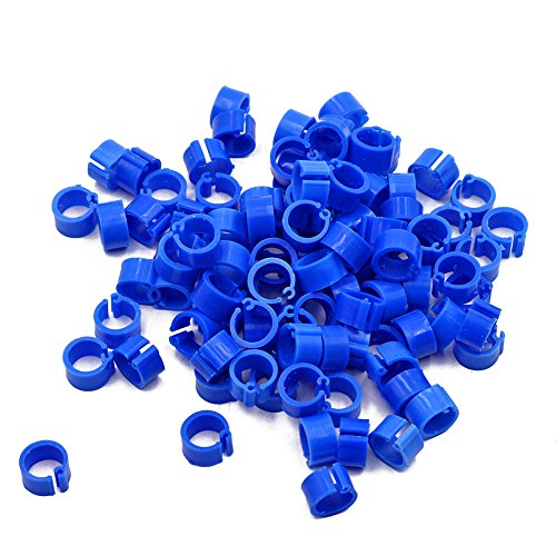 Lot de 100 vierges Bird pigeon jambe Bandes 8 mm ronds de jambe caille Clips