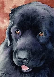 Newfoundland Dog Art Print by Artist DJ Rogers