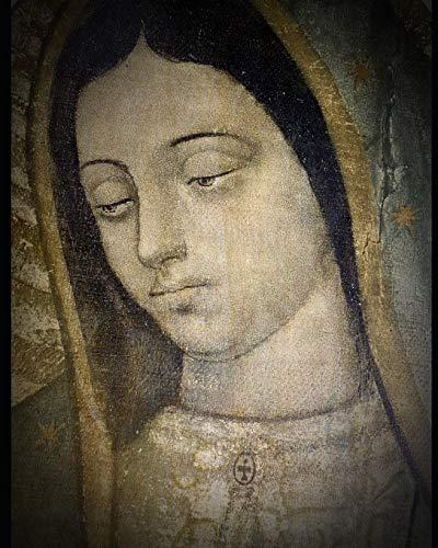 Vida de la Virgen (2): Según María Jesús de Ágreda en la Mística Ciudad de Dios