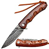 Sitivien ST204 Damascus Steel Folding Knife, Dalbergia Handle and VG10 Core Blade Tool Knife, EDC Pocket Knife for Outdoor, Camping, Hiking, Hunting