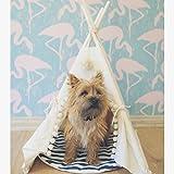 Comprar tipi para perro pequeño de algodón lavable