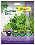 Flower 51167 51167-Siembra fácil aromáticas, No aplica, 19x2x19 cm