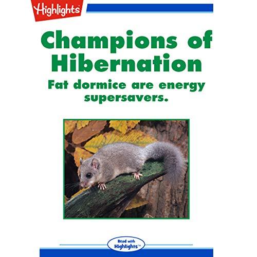 Champions of Hibernation copertina