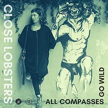 All Compasses Go Wild