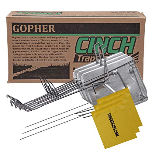 Cinch Gopher Trap with Tunnel Marking Flag (Large) Heavy-Duty, Reusable Rodent Trapping System | Lawn, Garden, and Outdoor Use | (Pack of 3)