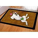 Coloranimal Kawaii 3D Dog Door Mat Area Rugs Doormat Indoor Outdoor Carpet Shoe Scraper