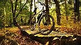 Rompecabezas 1500 Piezas Adultos De Madera Niño Puzzle-Bicicleta En El Bosque-Juego Casual De Arte Diy Juguetes Regalo Interesantes Amigo Familiar Adecuado