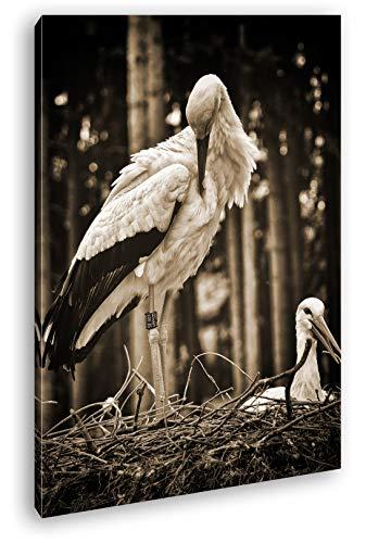 deyoli Störche bei dem Nestbau Format: 120x80 Effekt: Sepia als Leinwand, Motiv fertig gerahmt auf Echtholzrahmen, Hochwertiger Digitaldruck mit Rahmen, Kein Poster oder Plakat