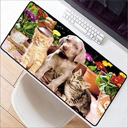 HonGHUAHUI leuke hond kat grote wereldkaart rubber muismat spel tablet muismat met Edge Locking, 300X700X2MM