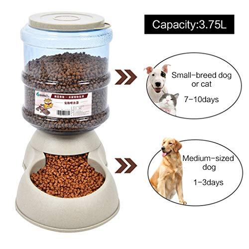 Mangiatoia automatica per cani e gatti, 3,7 l, grande capacità, ciotola in plastica dispenser autoerogante a gravità B