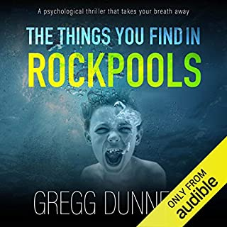 The Things You Find in Rockpools cover art