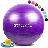 arteesol Palla Fitness, Palla Pilates Fitball Anti-Scoppio 45cm/55cm/65cm/75cm/85cm Palla da...