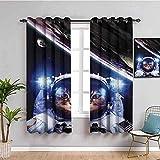 LucaSng Cortinas de Opacas - Ciencia ficción Astronauta Animal Gato - 280x245 cm - para Sala Cuarto Comedor Salon Cocina Habitación - 3D Impresión Digital con Ojales Aislamiento Térmico Cortinas