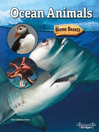 Ocean Animals (Biome Beasts)