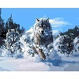 FVNR DIY pintura por números para adultos DIY Lienzo Set de arte de pared para regalo Snow WolfEnhance Hands-On Hability16 x 20 pulgadas sin marco