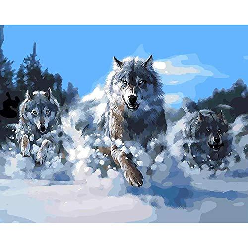 CHXFit Imagen de óleo de lobo por número Animal Colorear dibujo de marco sobre lienzo pintura por número para adultos Decoración casera Arte BRICOLAJE Regalo-40x50cm no frame