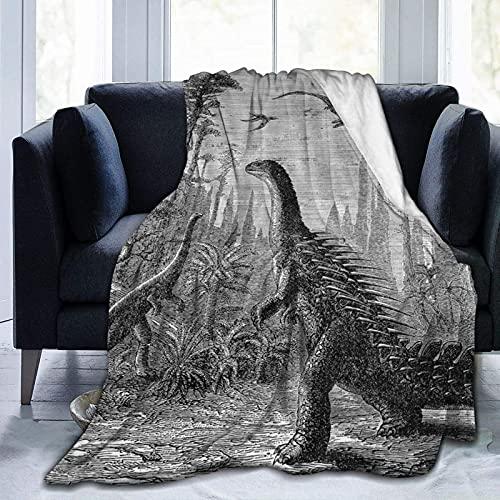 Coperta in microfibra morbida e calda, con dinosauri e draghi paesaggistici primitivi della terra, morbidissima coperta in microfibra per divano unisex