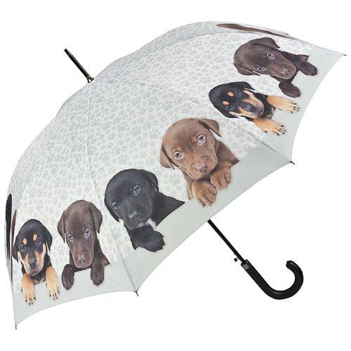 VON LILIENFELD Regenschirm Automatik Damen Hunde Motiv Welpenquartett