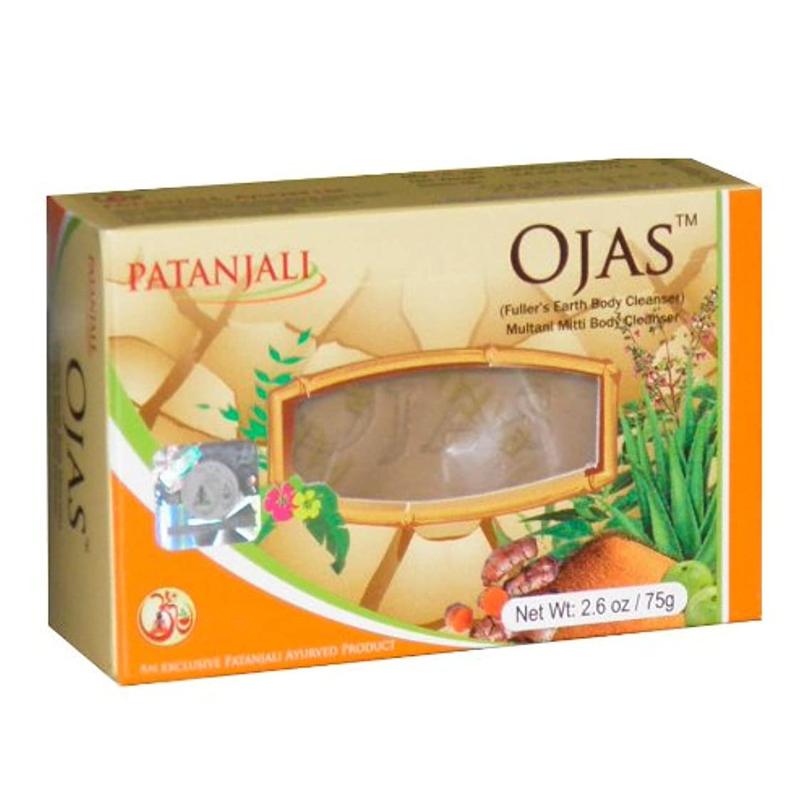 Natural Ayurvedic Soap with Herb Oils and Multani Clay 2x75g (2x2.6oz) From India