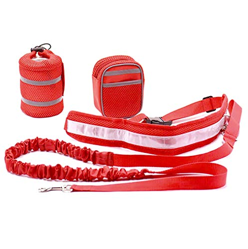 zhxinashu Sport Laufen Gehen Haustier Hundeleine Riementasche Speichergeld Telefon zum Reise Rave Festival Party Taille Pack Rot