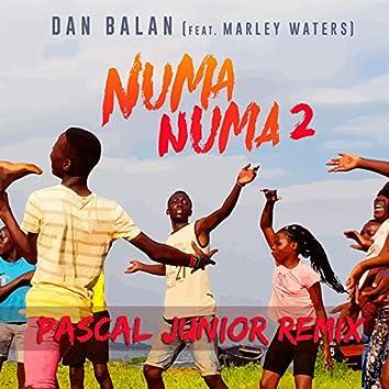 Numa Numa 2 (feat. Marley Waters) [Pascal Junior Remix]