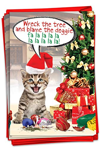 NobleWorks - 12 Funny Cat Christmas Cards with Envelopes - Pet Animal Holiday Humor, Boxed Notecard Set (1 Design, 12 Cards) - Blame the Doggie B1910