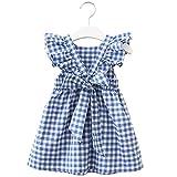Zanie Kids Baby Girl Short Sleeves Sleeveless Summer Floral Dress Toddler Flower Print Playwear Cotton One Piece, Blue Gingham, 24-36 Months, 2-3 Years