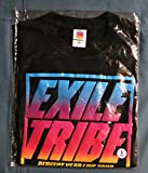 EXILE TRIBE PERFECT YEAR LIVE TOUR TOWER OF WISH 2014 ~THE REVOLUTION~ THE REVOLUTION ツアーTシャツ ブラック サイズS エグザイル