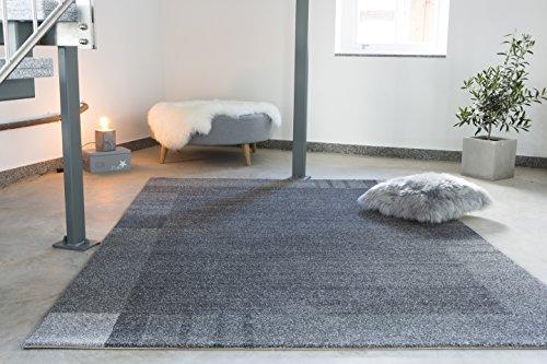 Andiamo Carpet Le Havre, geweven tapijt, zacht, woonkamer, slaapkamer, hal, eetkamer, 100% polypropyleen, vrij van schadelijke stoffen Tapijt. 80x120 cm Grijze rand