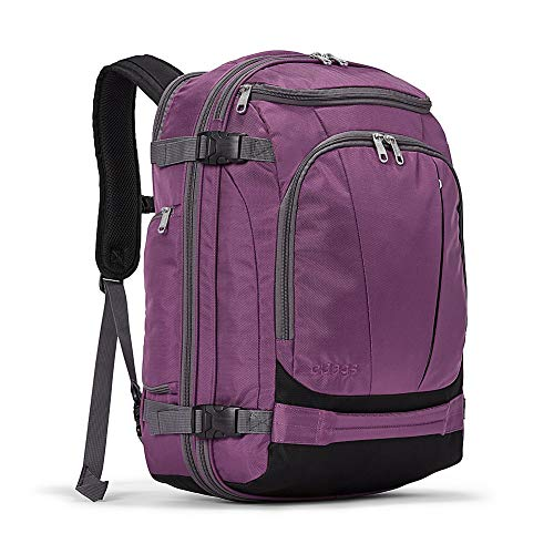 eBags TLS Mother Lode Weekender Junior 19 Inch Carry-On Travel Backpack - Fits Up to 17.5 Inch Laptop - (Eggplant)