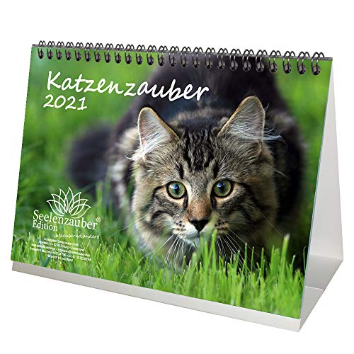 Katzenzauber DIN A5 Tischkalender für 2021 Katzen und Katzenbabys - Geschenkset Inhalt: 1x Kalender, 1x Weihnachtskarte (insgesamt 2 Teile)