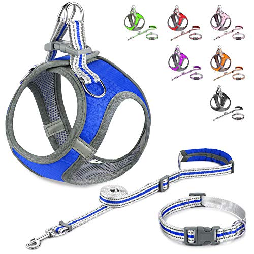 JSXD Small Dog Harness,Puppy Harness,Adjustable Leash and Collar Set for Small Dogs,Step-in Dog Harness,3M Reflective Pet Dog Vest for Small Medium Puppy