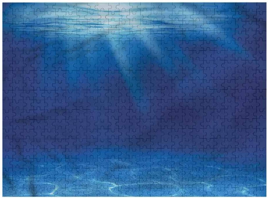 Mesa Austin Mall Mall Nomorer Kids Puzzles 1000 Piece Sea Ocean Floor Idyllic