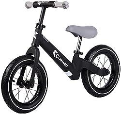stylisches Laufrad mit Luftreifen