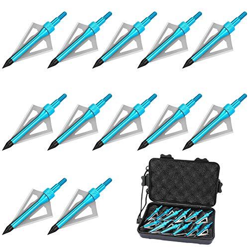 Brynnl Paquete de 12 Puntas de Caza de Tiro con Arco, Puntas de Flecha de Aluminio de 100 Granos, Puntas de Flecha para Exteriores atornilladas con Caja de plástico portátil de Puntas de Flecha