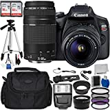 Canon EOS Rebel T7 DSLR Camera with 18-55mm DC III Lens and 75-300