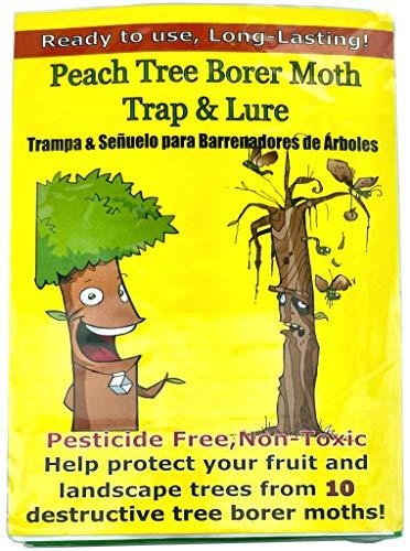 Peach Tree Borer & Clearwing Moth Trap (2 Pack, 8 Week)