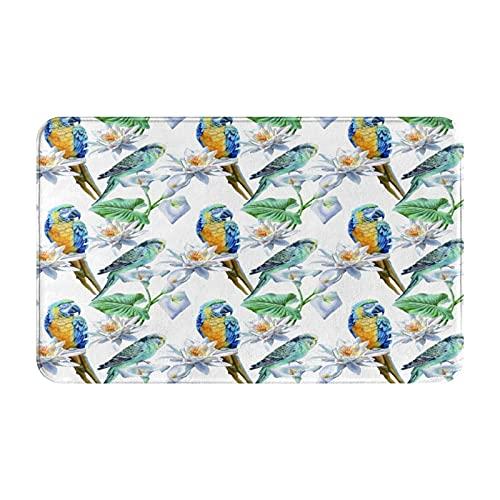 NANITHG Alfombra de Baño Antideslizante,Loros Aves de Aspecto Realista en Ramas Periquito y Guacamayo Ilustración de Vida Silvestre Tropical,Tapete del Piso de Microfibra de Lavable a Máquina Suave